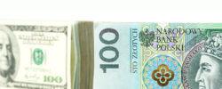 dolar, euro za 5 złotych
