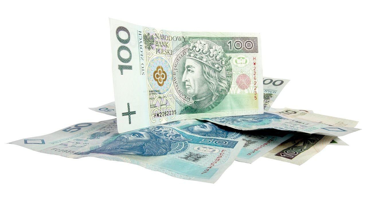 Polski Nowy Złoty – polska waluta!