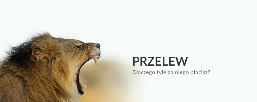 koszty przelewów, opłaty, banki, przelew zagraniczny, przelew walutowy, Ekantor.pl