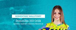 komentarz walutowy, Dominika Orlik, 333, motocross, enduro