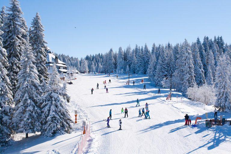 narty, snowboard, podróż, wyjazd, ferie